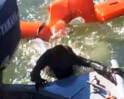 """Fisherman Throws Life Jacket To Save Drowning Dog, But It's """"Not A Dog At All"""""""