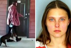 Woman Flings Dog In The Air By His Leash And Slams Him Hard On Concrete Floor