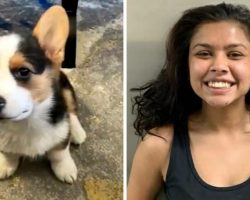 Woman Steals A Family's Puppy In Broad Daylight, Smiles When She's Arrested
