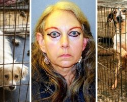 "Animal Rescuer Was Running ""House Of Horrors"", Kept Dozens Of Animals In Misery"