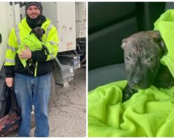"""Garbage Truck Driver On Route Finds """"Moving Backpack"""" Thrown To Side Of Road"""