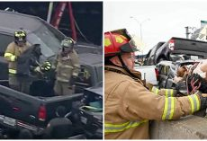 Firefighters Pull Dogs From The Wreckage After Deadly Pileup On Interstate