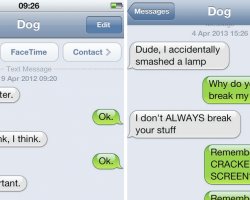 25 Hilarious Texts Your Dog Would Have Sent You If It Had A Phone