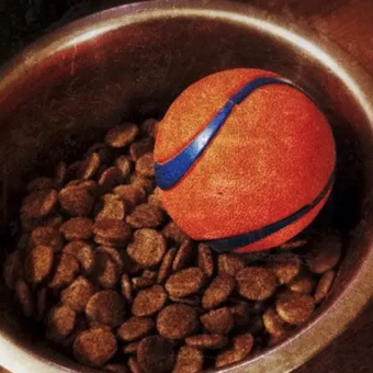 25 Genius Hacks All Dog Owners Need To Know
