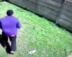 "Burglar Tries To Enter A Home, But Gets Chased Off By A ""Scary And Vicious"" Dog"