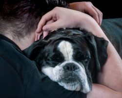 10 Surprising And Secret Ways Your Dog Says 'I Love You'