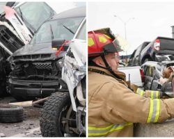 Firefighters Race To Pull Animals From 100-Car Pile-Up Before Explosion