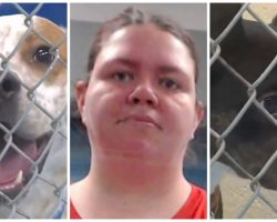 Hateful Woman Moves In With Boyfriend & Leaves Pets Behind With No Food Or Water
