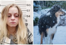Woman Ties Dog Up Outside All Alone In Bitterly Cold Snowstorm With No Shelter