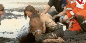 Woman Held The Horse's Head Above The Sand So He Could Breathe As His Body Sank Into Quicksand