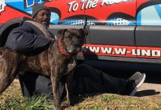 Homeless Man Saves All 16 Animals Inside Shelter That Caught Fire