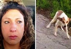 "Woman Drives To A ""Dog Dumping Ground"" At 4 AM And Sees A Dog Staring At Her"