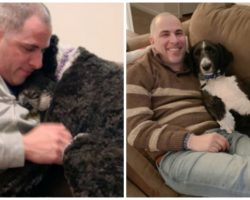 Organization Takes Deceased Woman's Service Dog Away From Grieving Husband