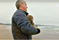 Man Held Baby Critter, Paraded Her Up And Down Beach So Her Cries Were Heard