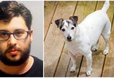 Man Abandons His Dog Twice In 2 Days Because 'He's Old And Pees Everywhere'