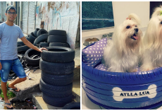 Man Converts Tires In Trash To Cozy Dog Beds – Upcycling Helps Thousands