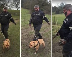 Angry Dog-Walker Covered Head-To-Toe In Mud Stumbles Down Path After Falling Over Twice in a Bog. HILARIOUS!