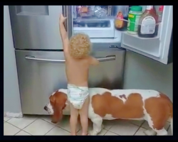 Baby Wants A Snack But He's Too Short To Reach, His Solution Has Mom Cracking Up