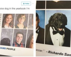 High School Student's Adorable Service Dog Gets His Own Photo In Yearbook