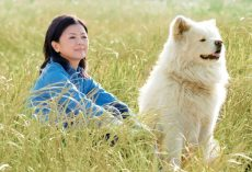 Netflix Dog Films PAWr Everyone: Kids, Paw-Buddies, and You