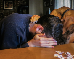 14 Times Pets Knew That Their Owners Needed Comfort
