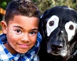 Boy Learns to Cope with his Skin Condition After Discovering a Dog with the Same Condition