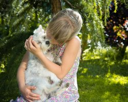 5 Simple Ways To Show Your Dog Affection
