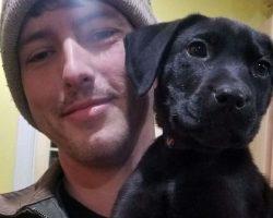Deaf Man Adopts Deaf Rescue Puppy, Teaches Him Tricks Using Sign Language