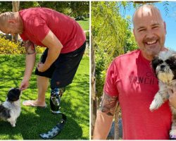 Double-Amputee Rescue Dog Finds Loving New Home with Police Detective Who Also Lost His Leg In Accident