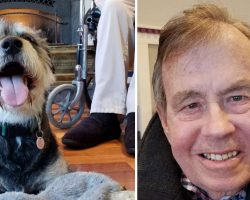 Dying Man Holds On Until His Last Wish To Find A Home For His Beloved Dog Is Met