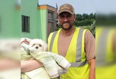 Garbage Truck Driver Saves Tiny Dog's Life Who Ended Up In His Truck