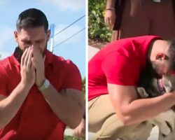 'That's My Dog, Man! That's My Dog,' Man Overwhelmed with Emotion After Finding His Lost Dogs