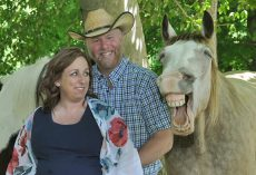 Horse Says 'Cheese' and Steals Spotlight by Photobombing Couple's Maternity Photoshoot