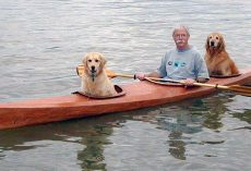 Man Builds A Special Kayak To Go On Little Adventures With His Dogs