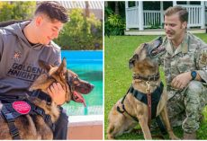 Retiring Military K9s Return Home — and Get Reunited with the Handlers They Worked with Overseas