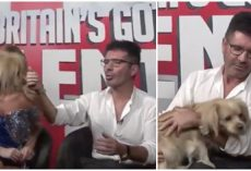 Simon Cowell in a Surprise Got To Meet One of the Dogs He Helped Rescue from the Slaughterhouse