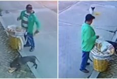 Street Vendor Caught On Camera Sharing What Little He Has With Hungry Stray Dogs