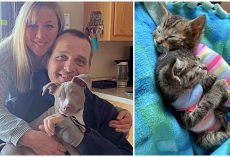 Woman Adopts 26 Pets & Turns Her Home Into A Sanctuary For Special Needs Animals