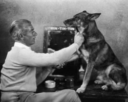 Dogs in History: Rin Tin Tin, the Dog that Saved Hollywood