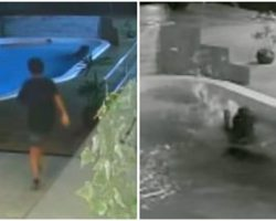 11-Year-Old Boy Hailed As Hero After Saving His Dog From Drowning In Pool